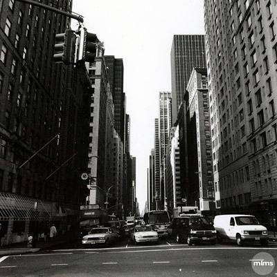 newyorkcityatthestop.jpg